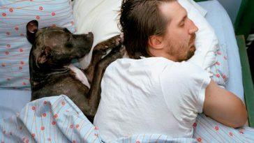 Nem fogod elhinni! Egészségesebb a kutyával alvás, mint gondolnád!