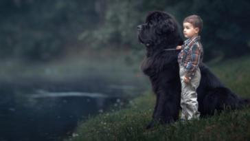 kutyagyerekkel