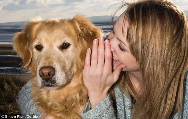 Te is szoktál beszélni a kutyádhoz? Akkor ez most nagyon meg fog lepni!