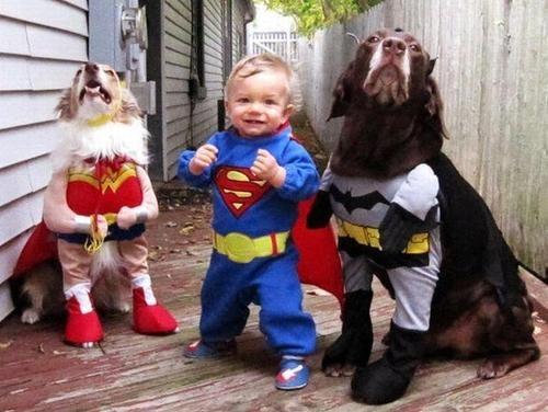 családias kutyák18