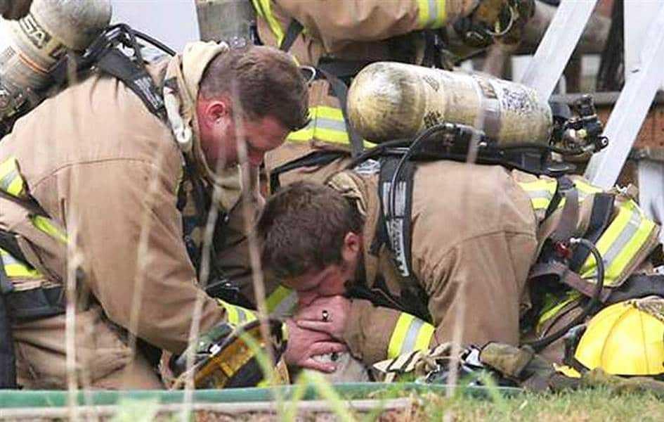18 kép tűzoltókról akik állatok életét mentik meg 17