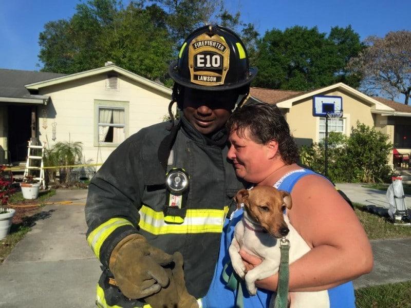 18 kép tűzoltókról akik állatok életét mentik meg 4