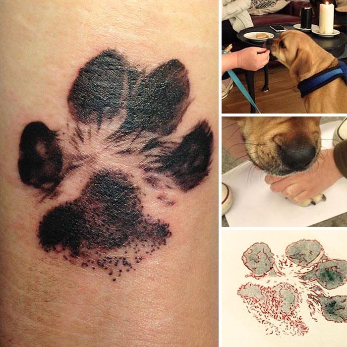 21 gazdi, aki a kutyája tappancsát tetováltatta magára17