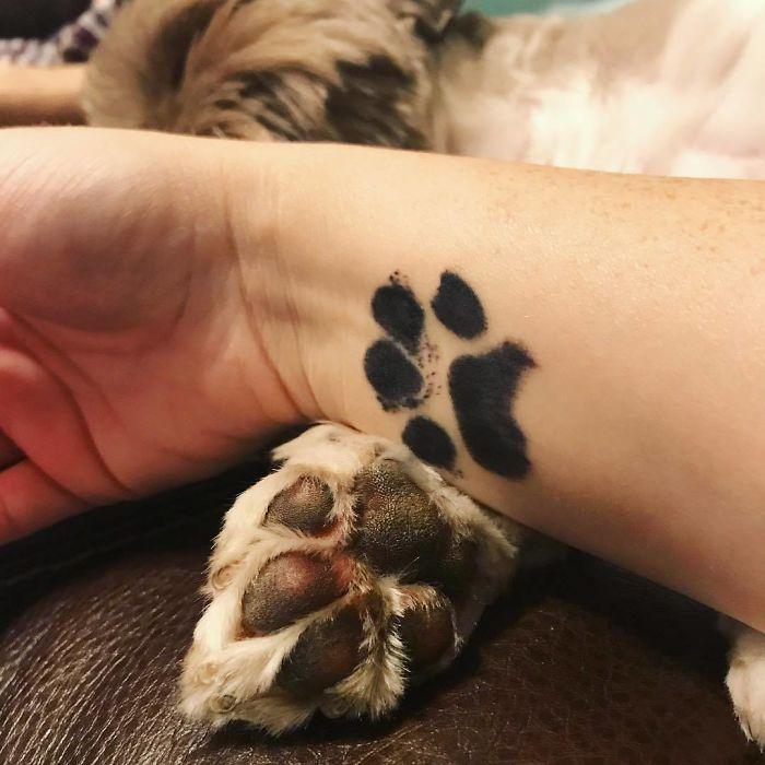 21 gazdi, aki a kutyája tappancsát tetováltatta magára18