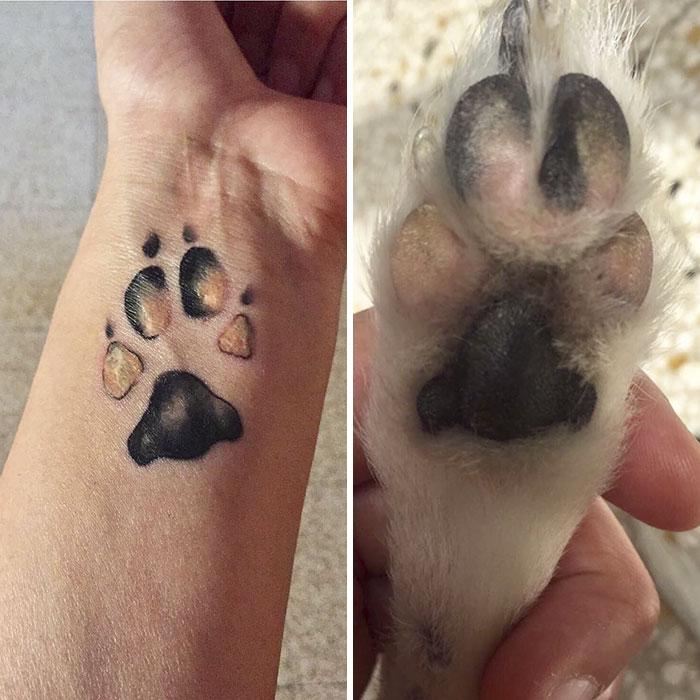 21 gazdi, aki a kutyája tappancsát tetováltatta magára3