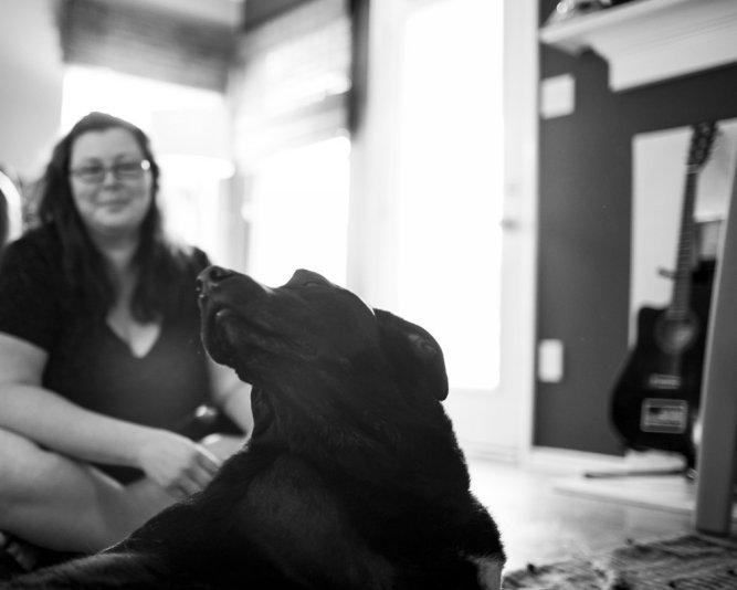 A történet ennek a kutyusnak az utolsó napjáról gyönyörű, és szívszorító20