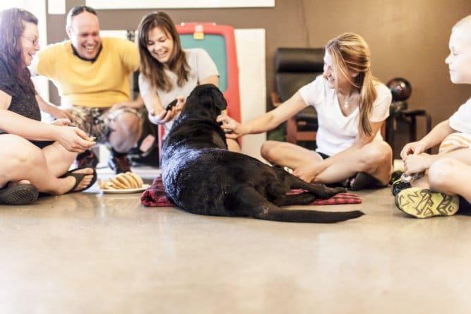 A történet ennek a kutyusnak az utolsó napjáról gyönyörű, és szívszorító4