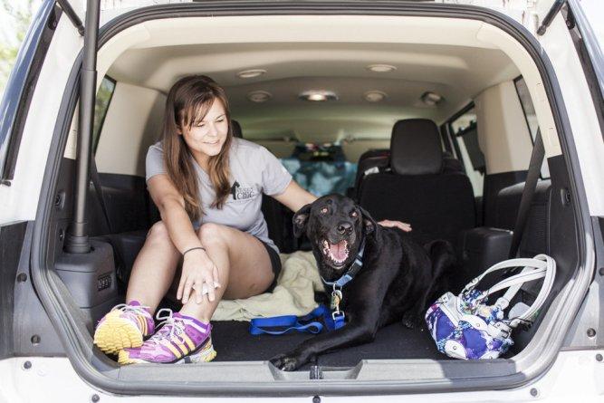 A történet ennek a kutyusnak az utolsó napjáról gyönyörű, és szívszorító8