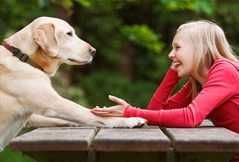 Beszélsz a kutyádhoz2