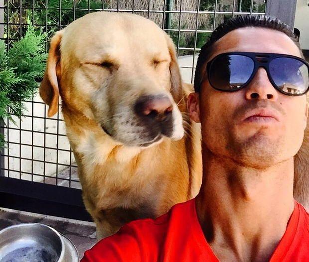 Cristiano Ronaldo meghallotta, hogy megszűnhet a menhely