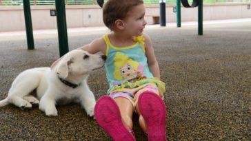 Egy láb nélkül született kislány fogadott örökbe egy mancs nélküli kiskutyát1