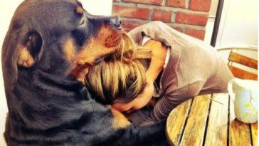 19 ok, amiért hálás lehetsz kutyádnak