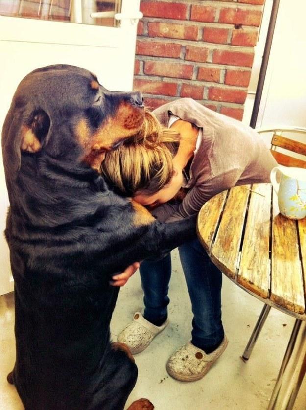 19 ok, amiért hálás lehetsz kutyádnak16