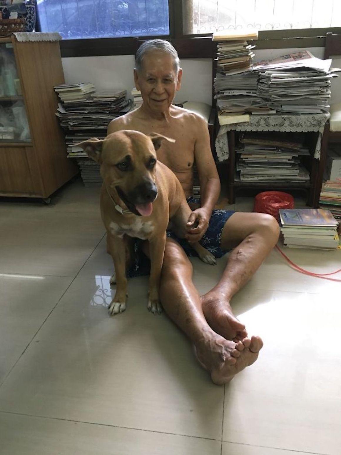 29 nagyra nőtt kutya15
