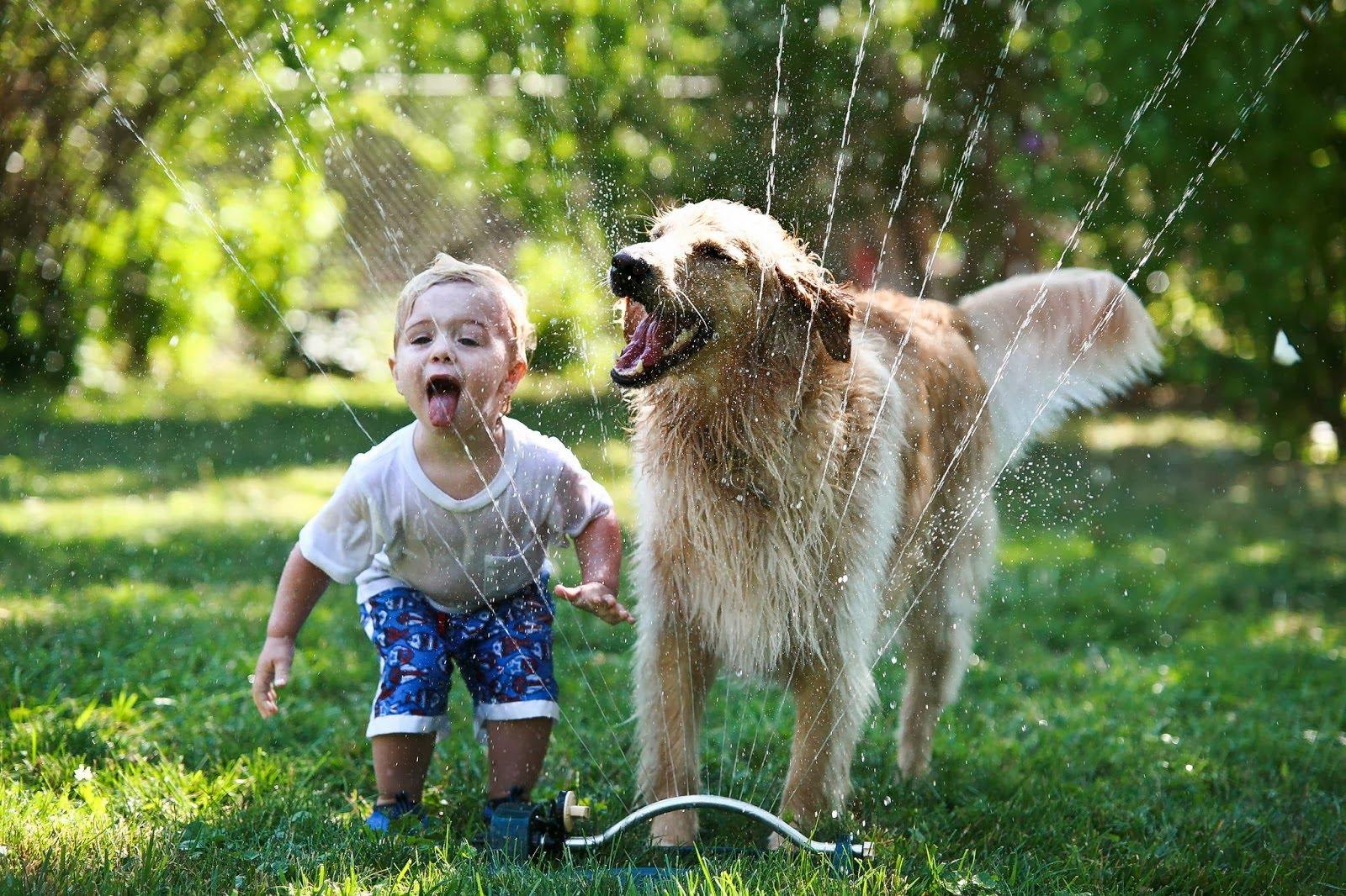 5 ok, amiért a kutyák jó hatással vannak a gyermekekre2