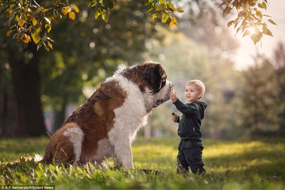 5 ok, amiért a kutyák jó hatással vannak a gyermekekre3