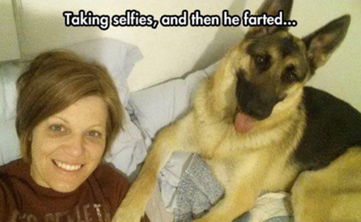 A gazdi pukizással gyanúsítja a kutyát szelfizés alatt1