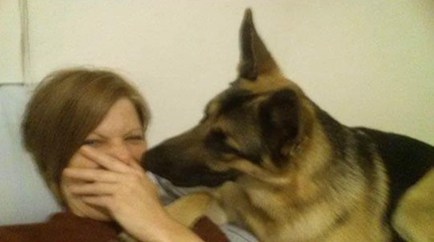 A gazdi pukizással gyanúsítja a kutyát szelfizés alatt2