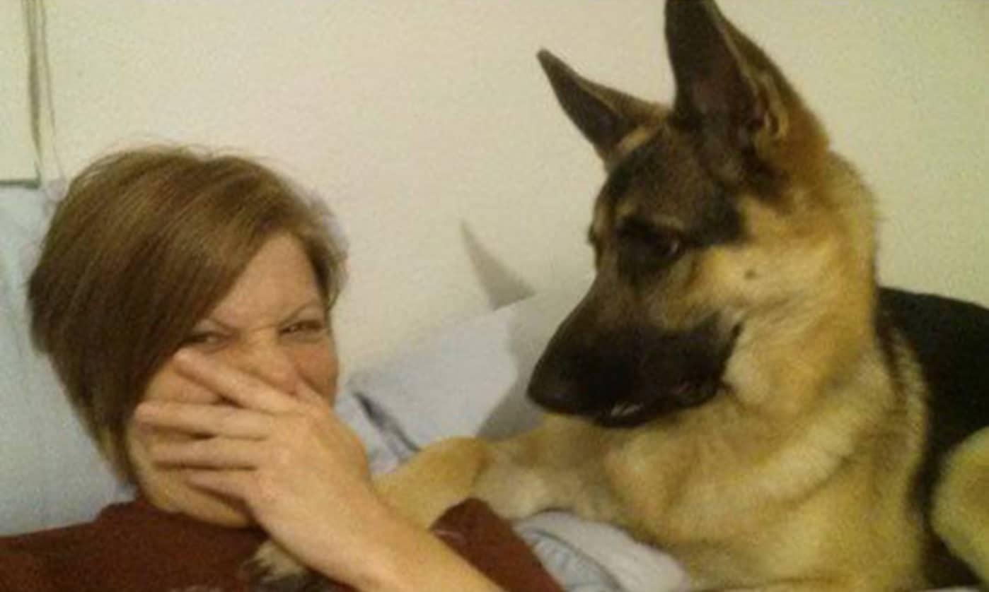A gazdi pukizással gyanúsítja a kutyát szelfizés alatt3