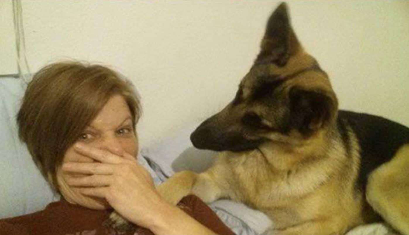 A gazdi pukizással gyanúsítja a kutyát szelfizés alatt4