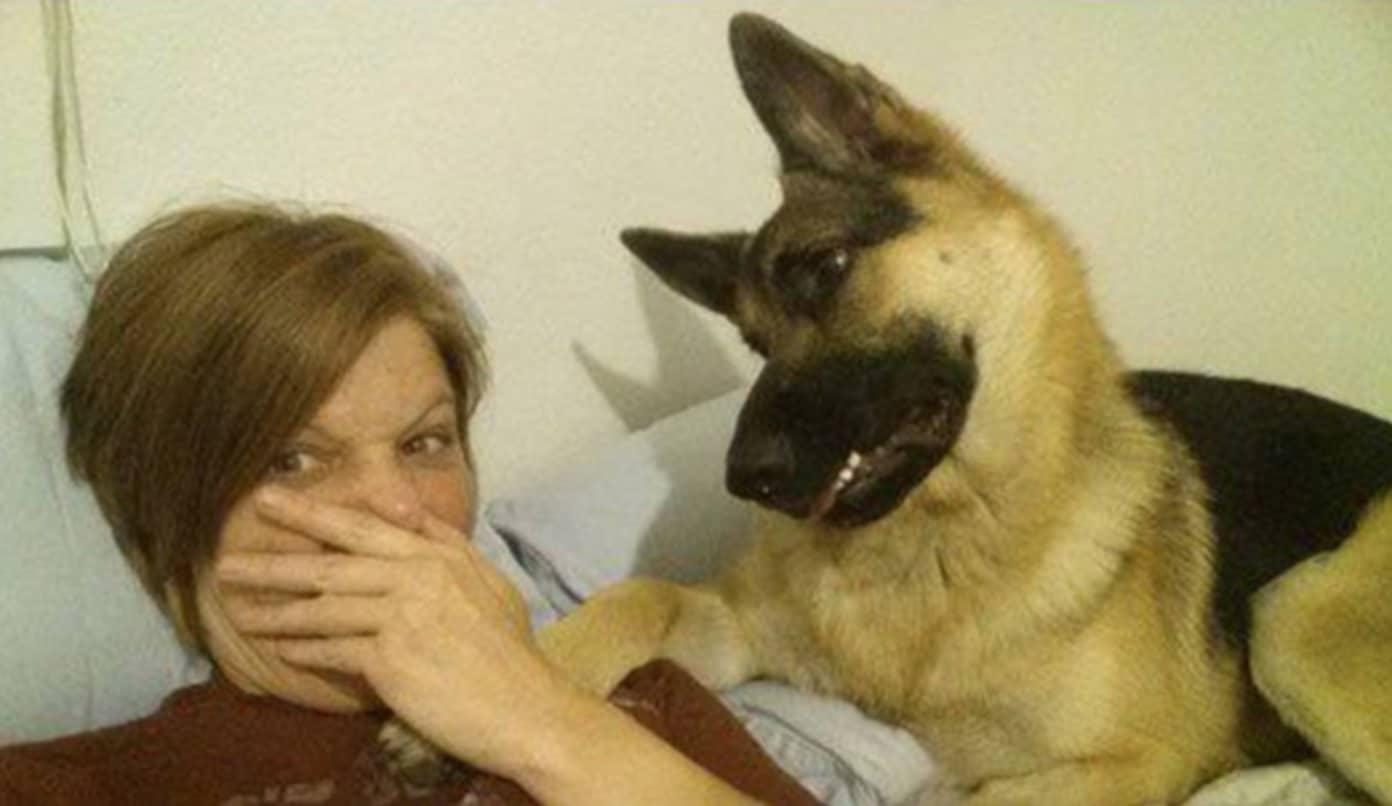 A gazdi pukizással gyanúsítja a kutyát szelfizés alatt5