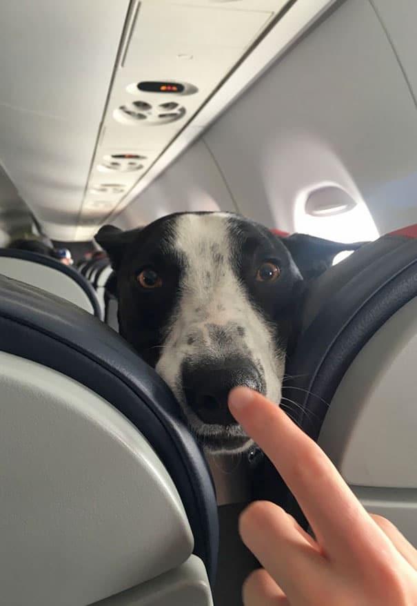 15 útitárs, akivel szívesen utaznál egy repülőn10