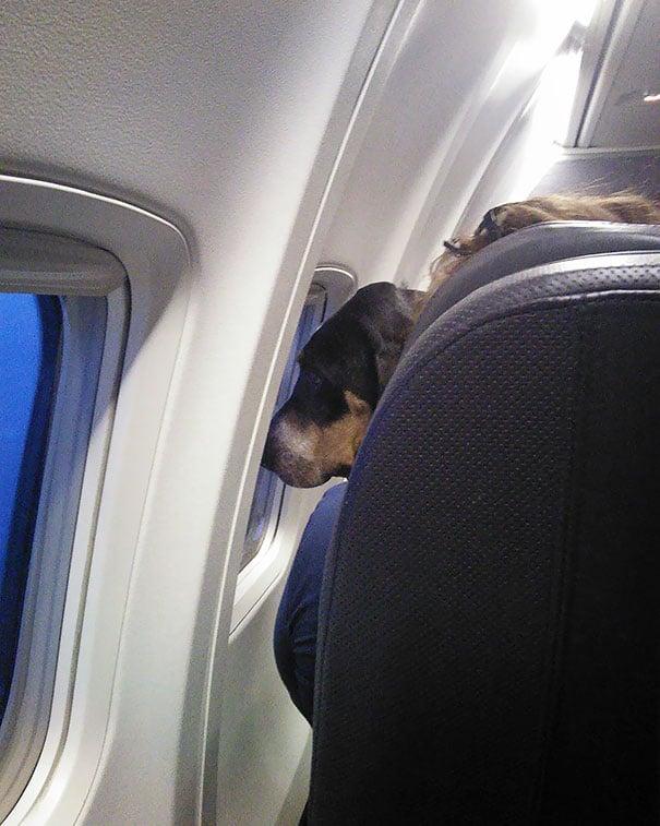 15 útitárs, akivel szívesen utaznál egy repülőn4