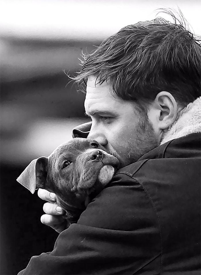 Szívmelengető kutyás fotók Tom Hardy-ról8
