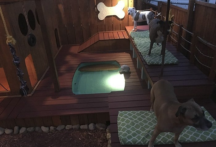 Ez a férfi megépítette a kertjében a kutyáinak az álomotthont