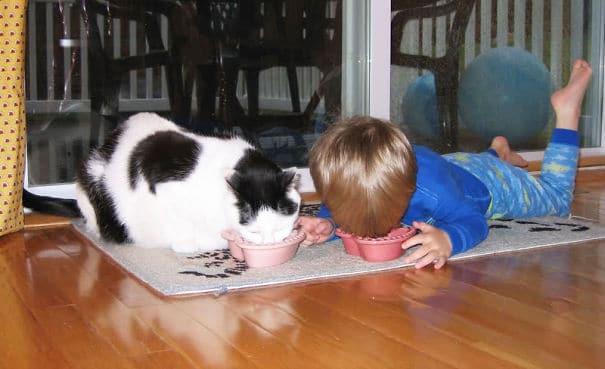 #10 Ahhoz, hogy én is macska lehessek, nekem is úgy kell ennem.