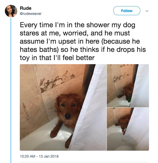 #11 Segít a fürdésben.