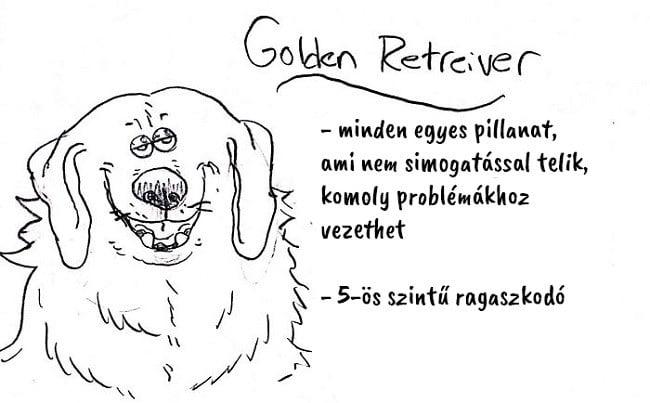 13 vicces útmutató, ami segít kiválasztani a hozzád illő kutyafajtát6