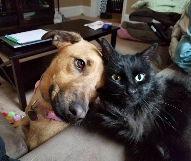 #14 Szeretnek egymáshoz bújni.