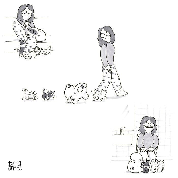 14 aranyos képregény, ami remekül summázza, hogy milyen is az élet egy kutyával