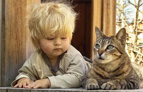#3 Tanulás, hogy hogyan lehetünk macskák.