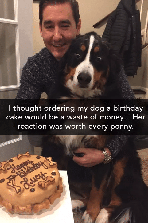 #5 Legjobb haverom születésnapja. Az arcára minden rá van írva.
