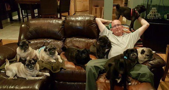 Bridge nem az első olyan kutya, akit Hanners megmentett - támogatja a kutyákat egy helyi mentőcsoportnak, a Hounds in Pounds-nak, és jelenleg nyolc mentett kutyája van.