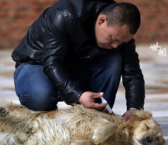 Ez a gazdag férfi a kutyáját kereste a vágóhídon4