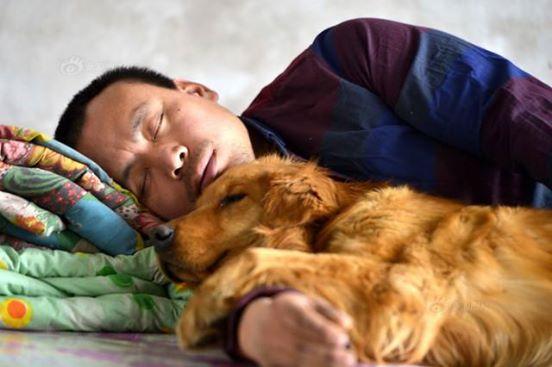 Ez a gazdag férfi a kutyáját kereste a vágóhídon6
