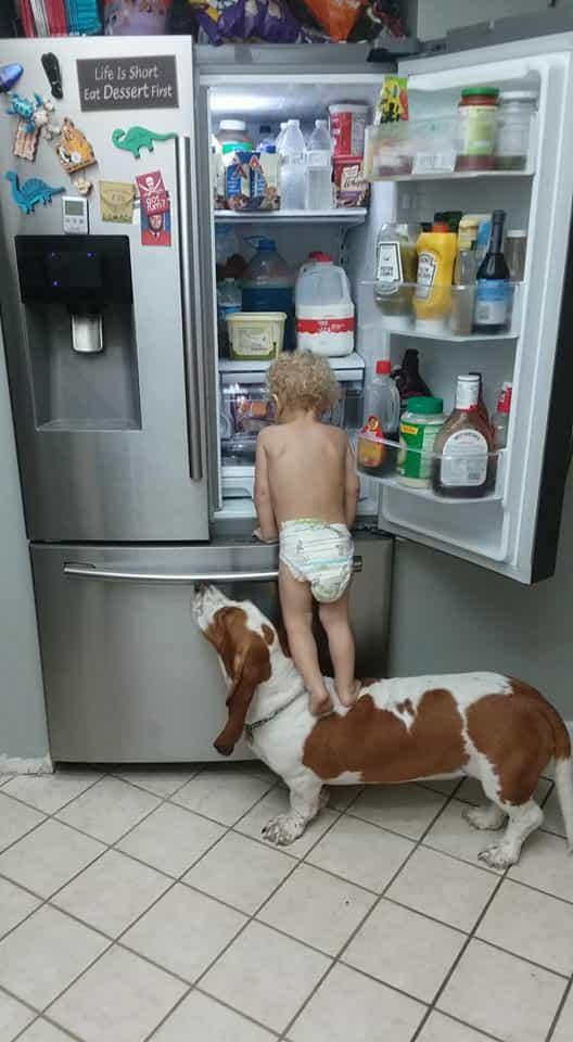 Ez a kutyus és a baba nagyon jól megértik egymást. Imádnak együtt rosszalkodni.