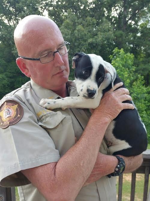 Mielőtt Bridge-t bemutatta a többi kutyának, azelőtt gondoskodott arról, hogy átvizsgálják és beoltják.