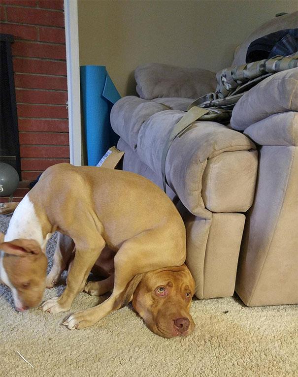 Várjál még egy picit, így most nagyon kényelmes.
