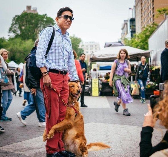 ez a kutya minden sétáló embert megölel