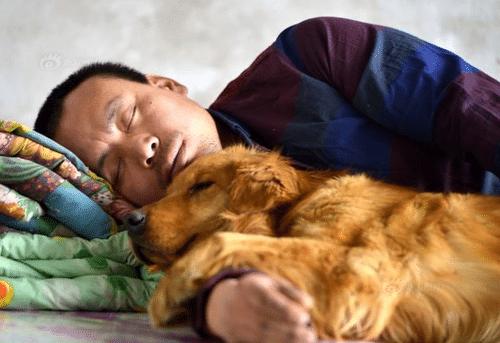 Ez a férfi csak a kutyáját szerette volna visszakapni