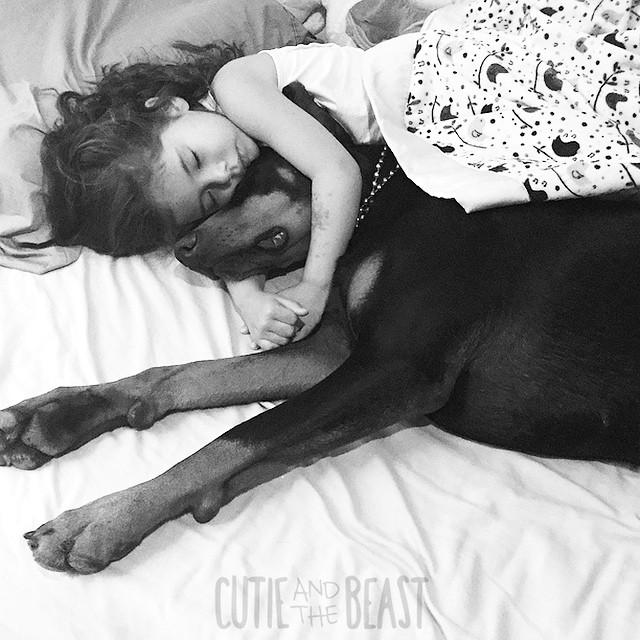 A kislány és a dobermann