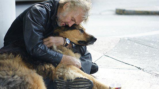 A menhely előtt aludt, elveszett kutyájára várva