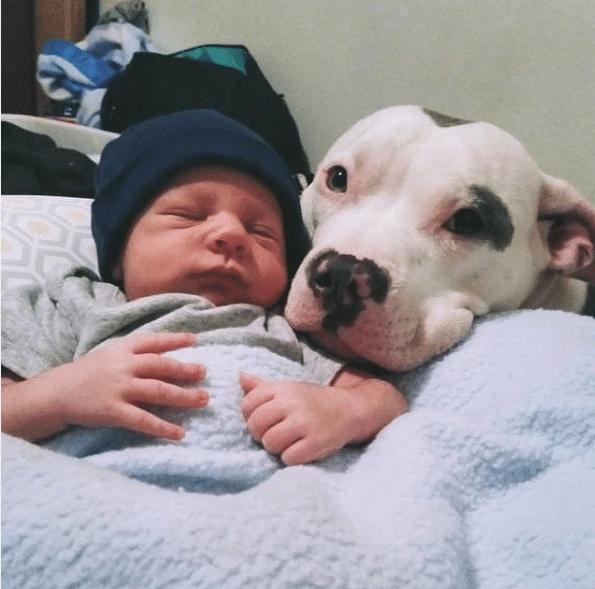 Az édesanya egyedül hagyta a babát
