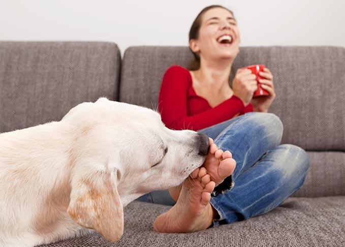Ezért szereti a kutyád nyalogatni a lábadat