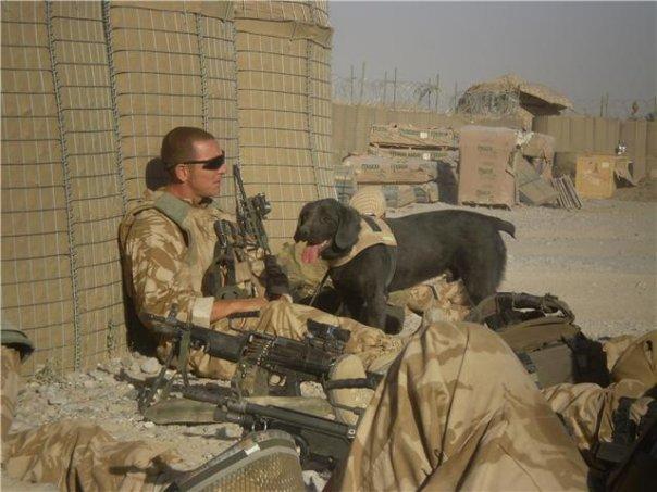 Magára tetováltatta imádott kutyája hamvait a veterán