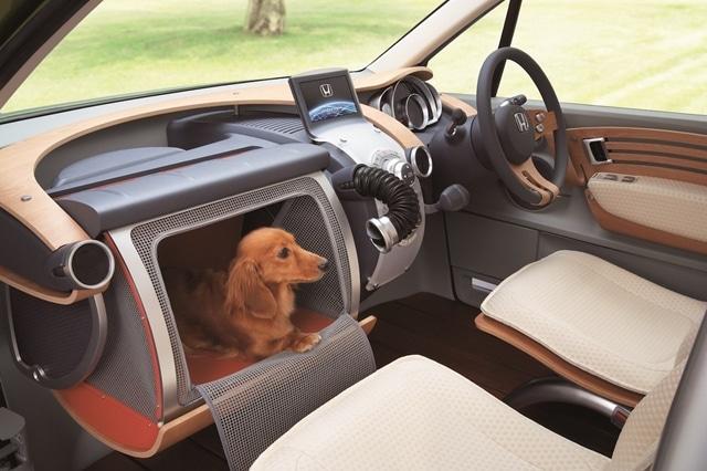 kutyabarát autó